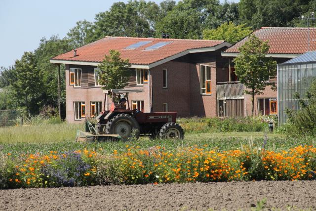 Onderzoek werkzaamheid Bloesemremedies op tuinbouwgrond